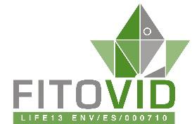 Fitovid